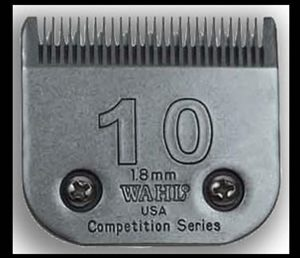 ​Lame​ ​Competition​ ​Wahl​ ​​#​10​