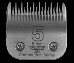​Lame​ ​Competition​ ​Wahl​ ​​#​5​