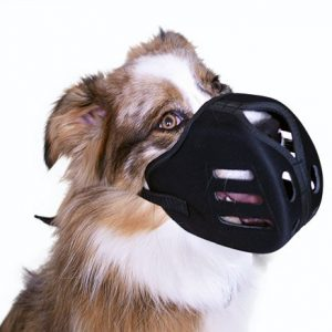 Tuffie Muzzled
